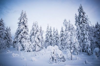 """Talven pakkasennätys mitattiin maanantaina Utsjoella, kun lämpömittari laski –38,8 asteeseen – """"lämpötila voi hyvin alittaa 40 pakkasasteen lukeman yön aikana"""""""