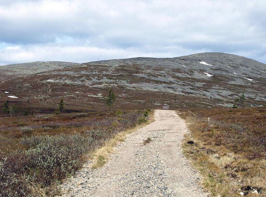 Kurssilla käsitellään muun muassa ilmastonmuutoksen vaikutuksia tunturiluontoon ja Pohjois-Suomeen.