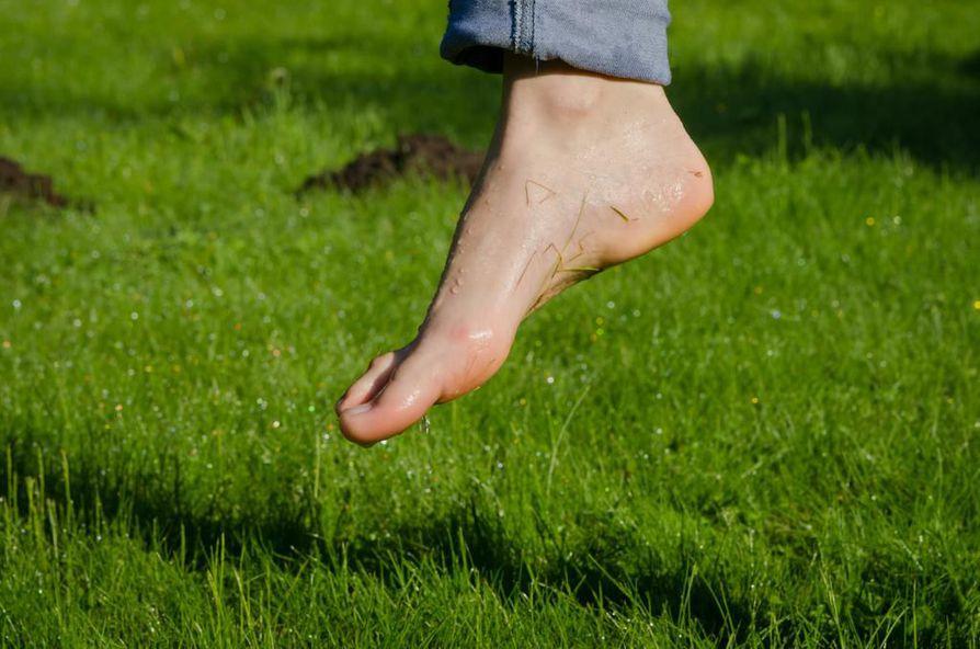 Avojaloin kulkeminen on hyväksi terveille jaloille. On hyvä asia, jos jalkapohjat hieman kipeytyvät avojaloin kävelemisestä. Se on merkki siitä, että jalan pienet lihakset ovat päässeet kunnolla töihin. Esimerkiksi Saksassa on jo perustettu paljasjalkakävelyyn tarkoitettuja puistoja.