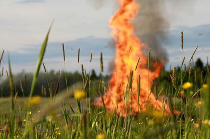 """Pelastuslaitos muistuttaa juhannuksen juhlijoita: Metsäpalovaroitus on voimassa – """"Juhannuskokot jäävät nyt polttamatta"""""""