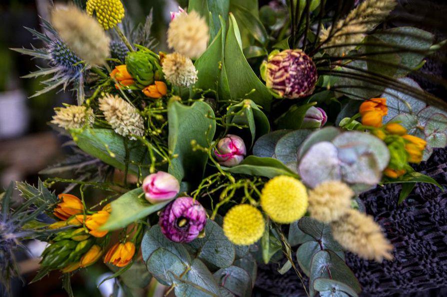 Nyt saa sekoittaa kukkakimpussa eri värejä: niin lähisävyjä kuin vastavärejäkin. Tässä kimpussa on tulppaanien lisäksi muun muassa leinikkiä, oranssitähdikkiä, kultahehkua, piikkiputkea, kuivaheinää ja riikinkukonsulka.