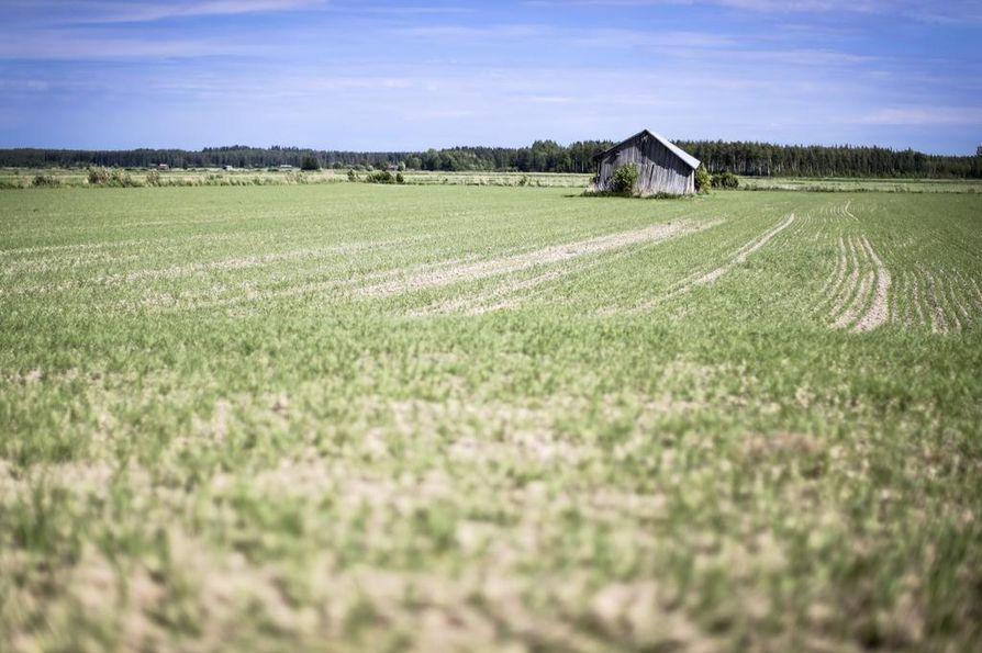 Parin viime vuoden huonot sadot ovat koetelleet maatalouden kannattavuutta.