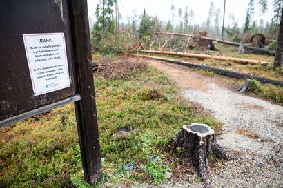 Kuusamon kaupunki esittää ministeriölle, että valtio korvaisi metsänomistajille osan Paula-myrskyn seurauksista
