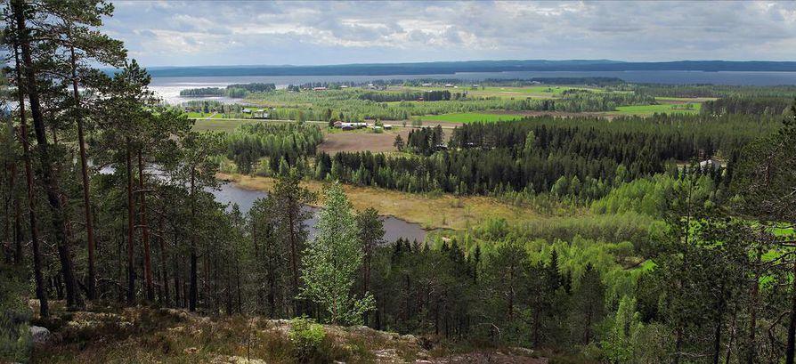 Talvivaara haluaa purkuputken Sotkamon  Nuasjärveen.