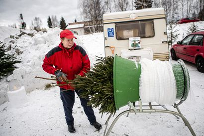 Kuusikauppa vilkastuu yleensä muutama päivä ennen aattoa – Joulun alla kauppiaat ovat paikalla kellon ympäri