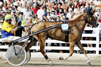 Kuninkuusravit Oulussa vuonna 2025 – raviurheilun suurtapahtuma tuo kaupunkiin noin 50 000 henkeä