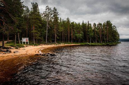 Rovaniemen Norvajärven uimarannalla on edelleen sinilevää – Uimista on syytä välttää