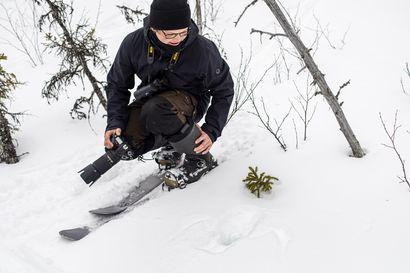 Nuorella pöllökuiskaajalla on somessa yli 26000 seuraajaa – nyt Antti Keränen vei toimittajan ja kuvaajan metsään, jossa odotti yllätys