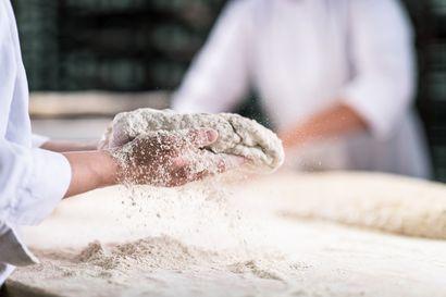 Uutta herkullista artesaanileipää Fazer Leipureilta