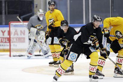 Kärppien kausi käynnistyy Rovaniemellä elokuussa RoKia vastaan– pelit Ruotsissa jouduttiin perumaan