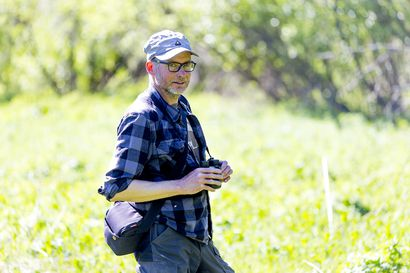 Perhosmies löysi Raahen seudulta 54 päiväperhoslajia