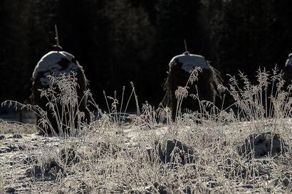 Syksy on nurkan takana – ensimmäinen hallayö Koillismaalla