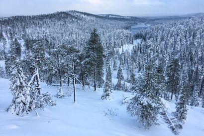 Saatiinko jo pysyvä lumi Koillismaalle? – tältä näyttää lähipäivien sää