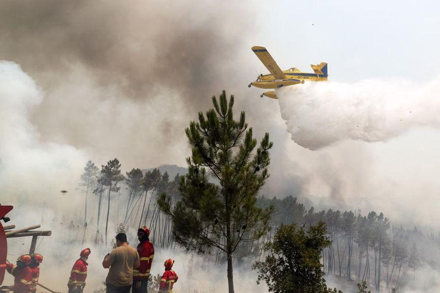 Maastopalojen sammutustöissä on lähes 1200 palomiestä ja yli 350 paloautoa.