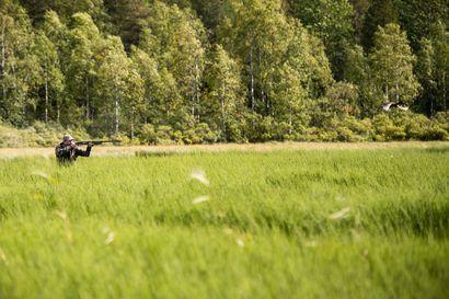 Metsästäjäliitto: Euroopan komission lyijyhaulirajoitus on perustuslain vastainen