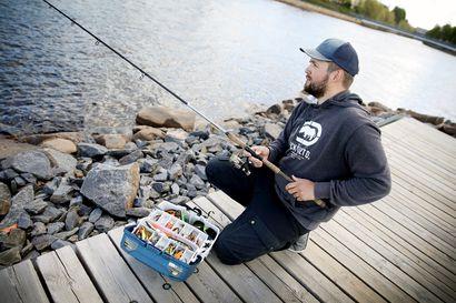 """Virvelistä on vaikka mihin, ja vieheiden määrä on nykyään huikea – Suosittu oululainen kalastustubettaja Sopuli: """"Ei tarvitse olla heti monta vapaa"""""""