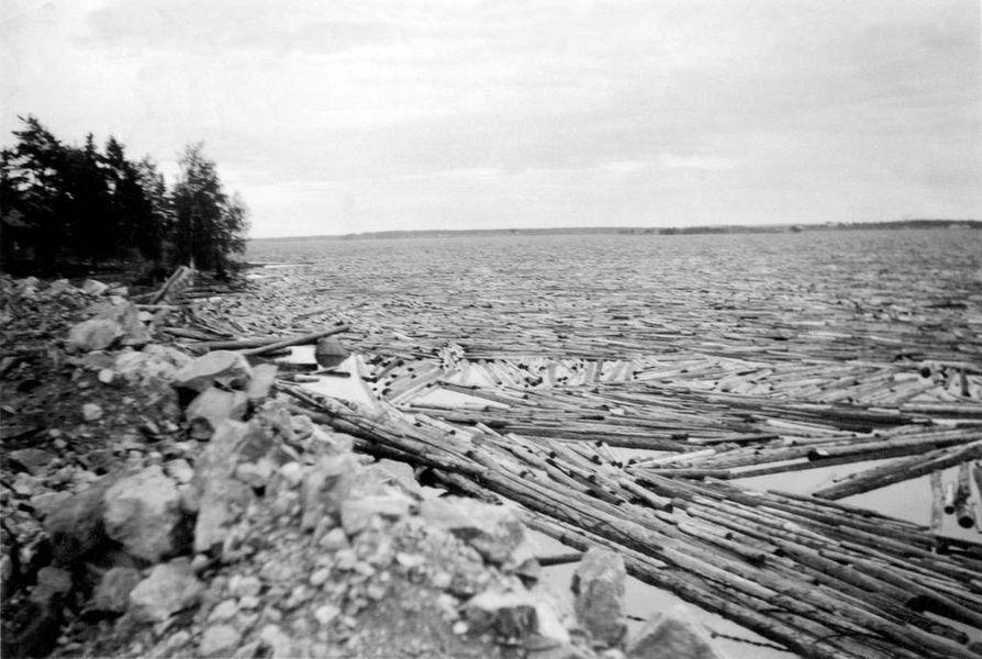 Kemijoen suulle syntynyt tukkisuma oli tiettävästi Länsi-Euroopan suurin.