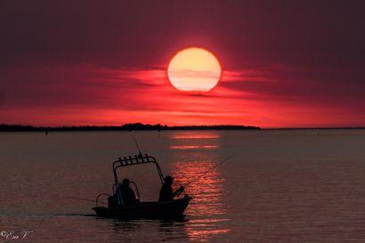 Lukijoiden lähettämiä kuvia kesän 2020 Kalakuvakisaan – lähetä omasi ja osallistu!