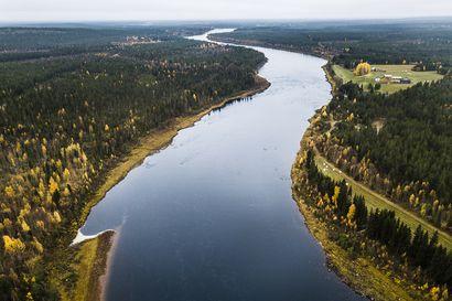 Tulva on nyt huipussaan Muonionjoella, Tornionjoen huippu vielä tulossa