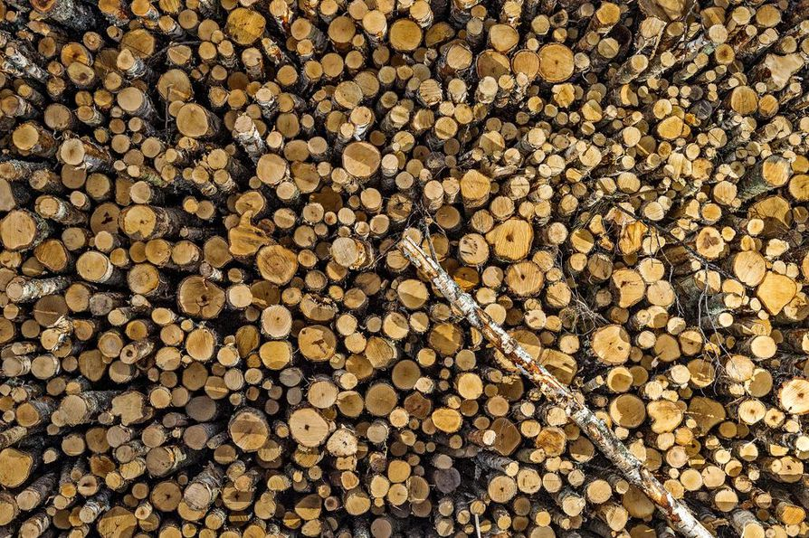 Kainuussa ja varsinkin Lapissa puukauppaa käytiin tammikuussa selvästi edellisvuotta vilkkaammin. Muualla pohjoisessa oltiin lähellä viime vuoden tasoa.