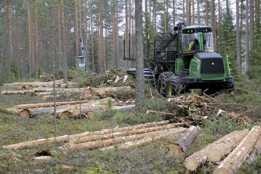 Hiilinielut ja luonnonvarat: Nielut ovat viime vuosina pienentyneet. Luonnonvarojen käyttö kasvaa, eikä vähene, kuten kiertotaloudessa pitäisi.