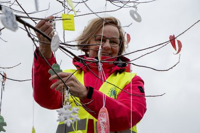Poimi heijastin puusta, jos oma unohtui kotiin– LC Kempele Auroran vapaaehtoiset ripustivat 200 heijastinta puuhun torin laidalle kuntalaisten käytetäväksi