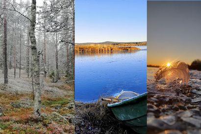 Lukijan kuvia: Talvi tulee, vedet jäätyvät