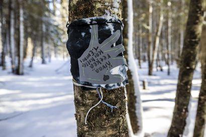 Talvinen taidepolku kiemurtelee halki mäntykankaan ja alta suurten kuusten – kurkkaa kuvia Warjakan taidepolusta