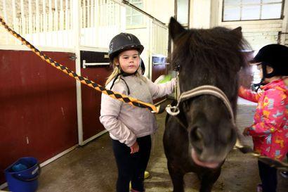 Tallin työt onnistuu, vaikka olisikin vain hevosen jalan mittainen – Lasten tallipäivänä ratsastettiin ja tutustuttiin hevosten elämään