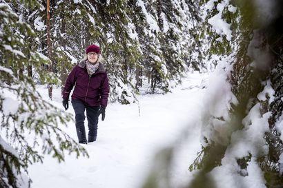 """""""Jämäkkä neuvottelija, joka osaa antaa asioiden riidellä"""" – Metsähallituksen Kii Korhonen antaa kasvot Lapin valtionmaiden metsätaloudelle"""