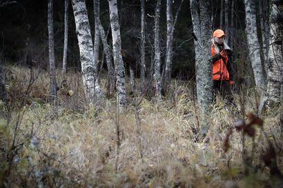 Itä-Lappi lyijyn täyskiellosta metsästyksessä: Uhkaa koko harrastusta ja myös metsätaloutta