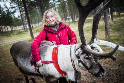 """""""Porotkin jo motivoituneita töihin"""" – Rovaniemen vilkastunut matkailu luo uskoa alan tulevaisuuteen"""