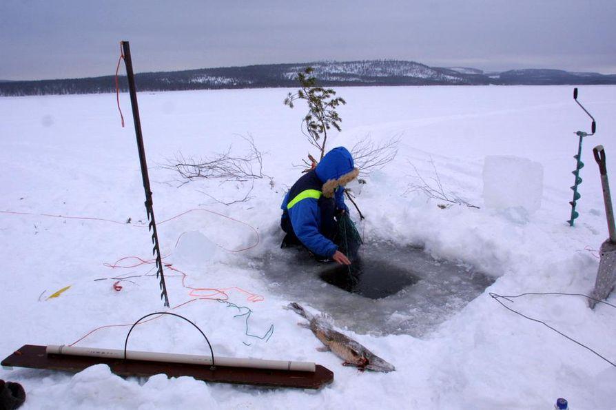 Kemijärven biotuotetehtaan jätevesien pitoisuuksia on arvioitu Kuopioon suunnitellun Finnpulpin tehtaan laskelmien perusteella.