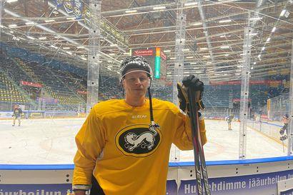 Pohjois-Pohjanmaa-palkinto myönnettiin tänään jääkiekkoilija Lasse Kukkoselle