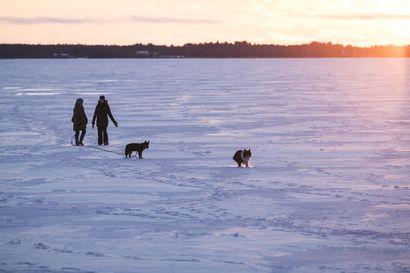 Jäänpaksuus vaihtelee koko maassa, Pohjois-Pohjanmaalla jääpeite 10–15 senttimetriä keskimääräistä ohuempaa