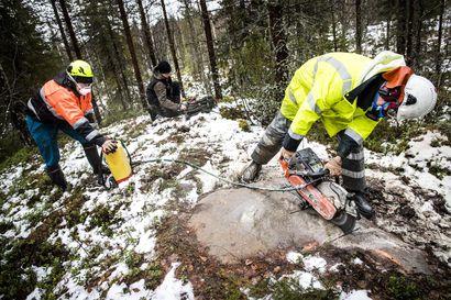 Kaivosyhtiöt tutkivat Rovaniemen kallioperää – Katso kartasta, mistä malmia etsitään