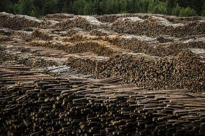 Metsäteollisuus heikentämässä työehtoja