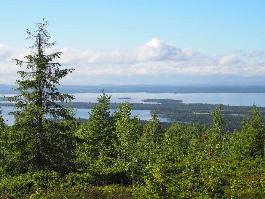 Juomasuon alue on Kuusamon luontomatkailun kannalta tärkeillä alueilla.
