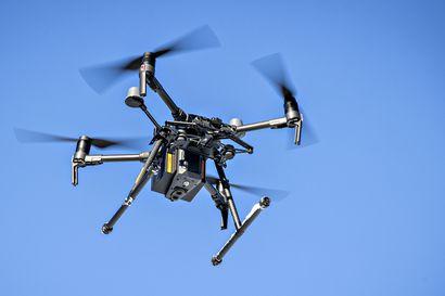 Rehun sekaan hajonnut drone tappanut jo kahdeksan lehmää Ylivieskassa – omistaja toivoo lennättäjiltä varovaisuutta