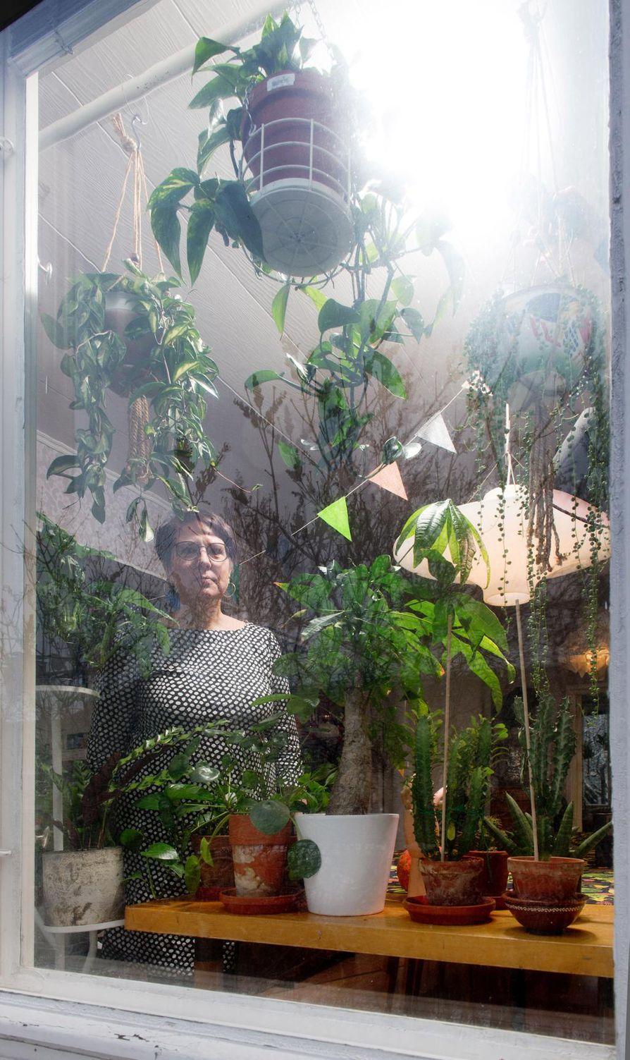 """""""Viherkasvimaailmaan uppoutuminen vie täysin pois työajatuksista. Viherkasvit yhdistävät ihmisiä ympäri maailman ja se on tässä harrastuksessa aika mahtavaa"""", sanoo Riikka Lehtovaara."""