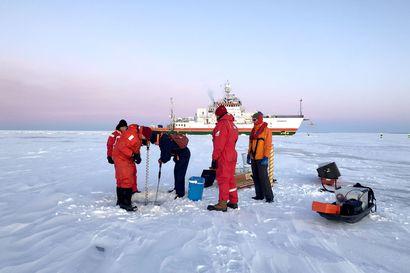 Perämerellä tarkkaillaan meren mikromuoveja ja siikaa osana isoa merenhoito-ohjelmaa