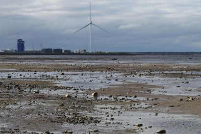 Kuvat: Merivesi karkasi rannoilta Perämerellä – Oulussa vedenpinta kävi 73 senttiä miinuksella
