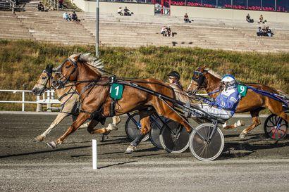 Kahden voiton Kari Alapekkala Mäntyvaaran T5-kohteiden ykköskuski