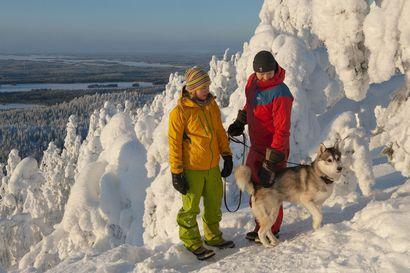 Ylös, ulos ja talviretkelle! – tässä vinkit retkeilyyn Koillismaan luonnossa