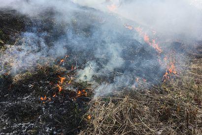 Päivystävä palomestari muistuttaa – vaikka metsäpalovaroitus tai ruohikkopalovaara ei ole tällä hetkellä voimassa on maasto paikoin erittäin kuivaa