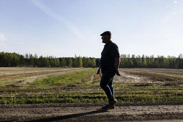 Martti Suortamo: Sukupuoli ja tasa-arvo koulussa, Muut kirjat ja lehdet, Kirjat.