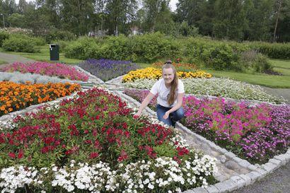 """Tornion Arboretum on jäänyt muiden kohteiden varjoon – """"Aivan lähelläkin asuu ihmisiä, jotka eivät ole koskaan käyneet täällä"""""""