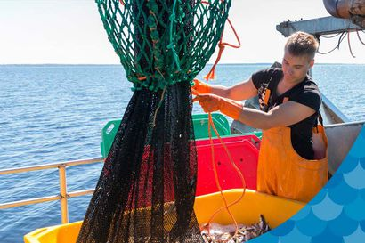 Kalastajalle kiitos – Herkuttele kotimaisella luonnonkalalla ja tue suomalaista kalastajaa