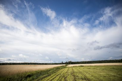 Selvitys: Hiilineutraalissa Suomessa peltoala voi vähentyä kymmeniä prosentteja