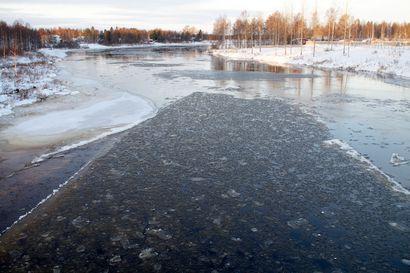 Hyydetulvariski jatkuu Iijoella –  Taivalkoskella vesi 40 senttiä korkeammalla ajankohtaan nähden